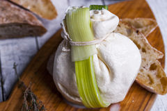 Fresh Italian mozzarella burrata Royalty Free Stock Photos