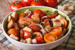 Fresh Italian panzanella salad close-up on the table. horizontal Stock Image