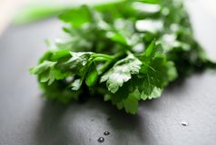 Fresh italian parsley on cutting board Stock Photo