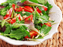 Fresh italian salad Royalty Free Stock Photos