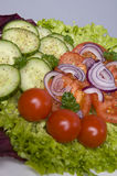 Fresh italian salad closeup Stock Photography
