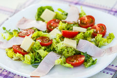 Fresh Italian salad Royalty Free Stock Image