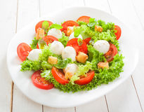 Fresh Italian salad with mozzarella cheese Stock Images