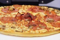 Fresh Italian salami cheese pizza Stock Photos