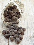 Fresh italian truffles royalty free stock image