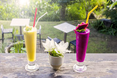 Fresh jackfruit juice and dragon fruit juice with garden background stock photography