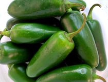 Fresh Jalapeno. Fresh green jalapeno peppers in a pile Stock Image