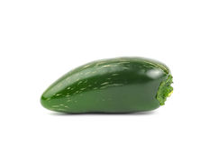 Fresh jalapeno pepper Royalty Free Stock Photography