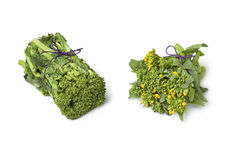Japanese baby broccolini and broccolini Stock Image