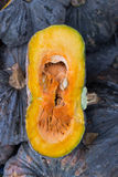 Fresh japanese pumpkin. Or kabocha with one piece cut out on farmers market Royalty Free Stock Images