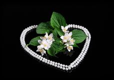 Fresh Jasmine Flower and Heart of Pearl Royalty Free Stock Photos