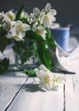 Fresh jasmine flowers on table Stock Photos