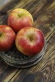 Fresh jonagold apples Royalty Free Stock Photo