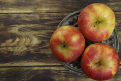 Fresh jonagold apples Royalty Free Stock Images