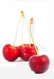 Fresh juice Cherries fruits isolated on white background Royalty Free Stock Photo