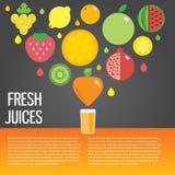 Fresh juice colorful round fruit icon set for. Vector modern illustration, stylish design element Stock Photography