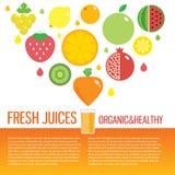 Fresh juice colorful round fruit icon set for. Vector modern illustration, stylish design element Royalty Free Stock Image