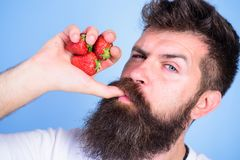 Fresh juice concept. Man strict face enjoy fresh drink strawberry juice. Man drinks strawberry juice suck thumb as drink. Straw blue background. Hipster bearded Royalty Free Stock Image