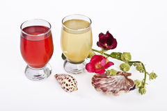 Fresh juice on glass and flowers. Tropical fresh juice on glass and flowers Royalty Free Stock Photos