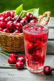 Fresh juice made of sweet cherries and ice Royalty Free Stock Images