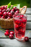 Fresh juice made of sweet cherries and ice Stock Photos