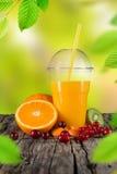 Fresh juice mix fruit. Royalty Free Stock Photos