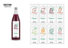 Fresh juice realistic glass bottle with labels set. Apple, kiwi, pomegranate, orange, grape, carrot, peach and strawberry fresh juice trendy packaging set stock illustration