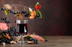 Fresh juice of ripe black chokeberry in glass and berries with l. Fresh juice of ripe black chokeberry Aronia melanocarpa in glass and berries with leaves on royalty free stock images