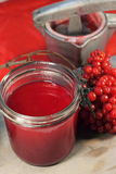 Fresh juice of viburnum Stock Photography