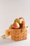 Fresh juicy apples in basket Royalty Free Stock Image