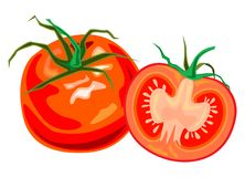 Fresh, juicy beautiful tomato and stock illustration