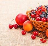 Fresh juicy berries Stock Photo