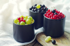 Fresh juicy berries of a gooseberry, black and red currant in cups. Stock Photo