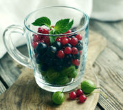Fresh juicy berries of a gooseberry, black and red currant in a transparent glass mug Royalty Free Stock Image