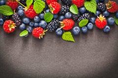 Fresh juicy berries Royalty Free Stock Image