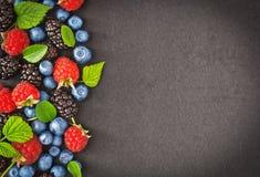 Fresh juicy berries Stock Photography