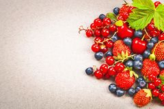 Fresh juicy berries Royalty Free Stock Photo