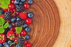Fresh juicy berries Stock Photos