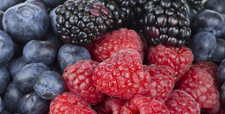 Fresh Juicy Berries Mix. Raspberries, Blueberries and Blackberries  mix for background Stock Images