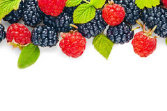 Fresh juicy berries Royalty Free Stock Photos