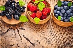 Fresh juicy berries Stock Images