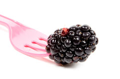 Fresh juicy blackberrie on a pink fork. Isolated on white stock photo