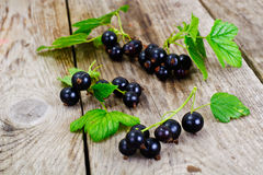 Fresh Juicy Blackcurrant Royalty Free Stock Images