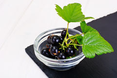 Fresh Juicy Blackcurrant Stock Photo