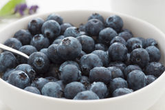 Fresh juicy blueberries Stock Photo