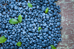 Fresh and juicy blueberries Stock Photography