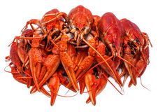 Fresh juicy boiled crawfish. seafood, healthy food. Stock Photo