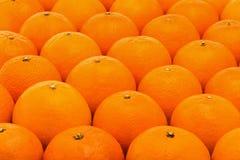 Fresh, juicy, bright mandarins with embossed skin Stock Images