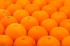 Fresh, juicy, bright tangerines photographed with a small depth of field Stock Photography