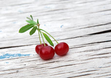 Fresh juicy cherries Royalty Free Stock Photography